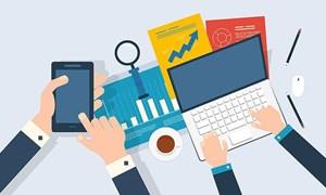 Nhà đầu tư nào thuộc đối tượng phải công bố thông tin?