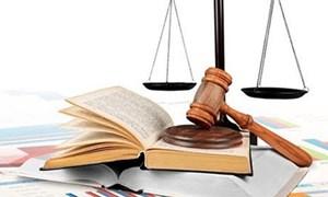Một loạt cá nhân bị xử phạt hành chính vì báo cáo không đúng thời hạn