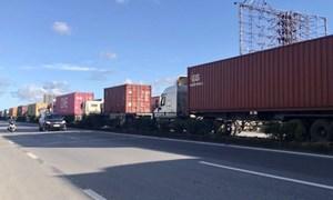 Hoạt động xuất nhập khẩu của Hà Nội có nguy cơ gián đoạn