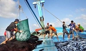 Doanh nghiệp thủy sản gặp khó do thiếu lao động, giãn cách, phong tỏa