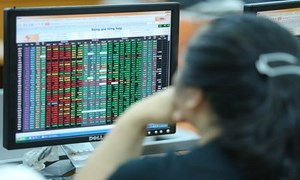 Thị trường cổ phiếu niêm yết HNX tháng 7/2021: Giá trị giao dịch giảm 30% so với tháng trước