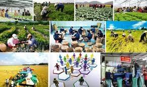 [Infographics] Kinh tế tập thể, hợp tác xã giai đoạn 2021-2025