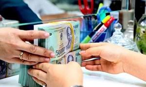 Hạn chế tối đa cấp bảo lãnh Chính phủ cho các khoản vay mới