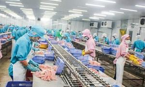 Gỡ khó cho xuất khẩu thủy sản