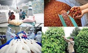 Tiếp tục kết nối tiêu thụ tốt nông sản, thủy sản