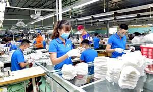 Tập trung hỗ trợ duy trì, phục hồi và phát triển sản xuất, kinh doanh