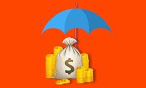 Phát hiện sớm các tổ chức tín dụng yếu kém: Cần cơ chế cho Bảo hiểm tiền gửi Việt Nam