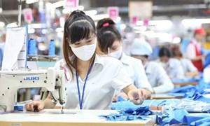 Hỗ trợ người lao động và người sử dụng lao động từ Quỹ bảo hiểm thất nghiệp
