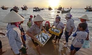Kinh phí hỗ trợ cho người lao động trong vùng bị ảnh hưởng bởi sự cố môi trường biển