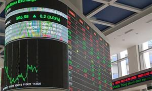 Gần 48 triệu cổ phiếu Thuận Đức chính thức niêm yết và giao dịch trên HOSE