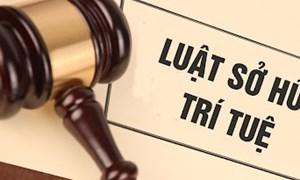 Sửa đổi Luật Sở hữu trí tuệ - Nguồn động lực cho kinh tế trí thức