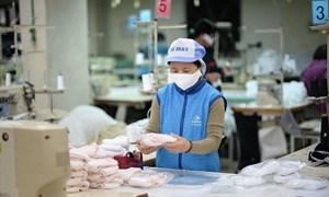 Doanh nghiệp Việt Nam xuất khẩu hơn 322,2 triệu chiếc khẩu trang y tế các loại