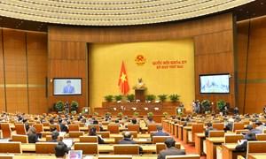Quốc hội tán thành với sự cần thiết sửa đổi Luật Kinh doanh bảo hiểm