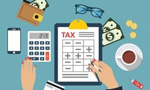 Tra cứu, xác nhận, điều chỉnh thông tin của người nộp thuế theo quy định mới như thế nào?