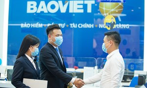 Tập đoàn Bảo Việt chi trả 667 tỷ đồng cổ tức bằng tiền mặt từ ngày 30/11
