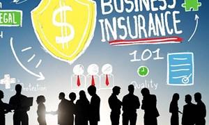 Triển khai bảo hiểm bảo lãnh: Kinh nghiệm quốc tế