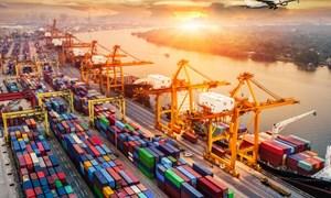Ngành dịch vụ hậu cần: Mở rộng quy mô thị trường nhờ CPTPP