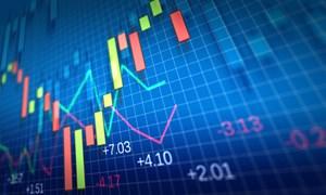 Nghĩa vụ cung cấp thông tin và giải trình về giao dịch chứng khoán, cung cấp dịch vụ giao dịch chứng khoán