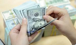 Những điểm nhấn trên thị trường tiền tệ Việt Nam năm 2018
