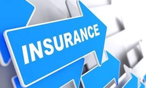 Thị trường bảo hiểm năm 2018: Tiếp tục có bước tăng trưởng vững chắc