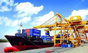 Tốc độ tăng trưởng xuất khẩu của Việt Nam đạt trên 15% trong giai đoạn 2011-2019