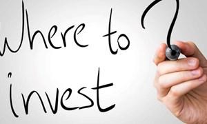 Năm 2018, doanh nghiệp Việt đầu tư ra nước ngoài bao nhiêu triệu đô?