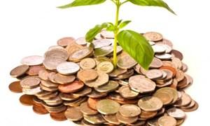 Hiệu quả đầu tư của doanh nghiệp bảo hiểm: An toàn là trên hết