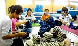 Chính sách thuế đối với nguyên liệu sản xuất hàng xuất khẩu