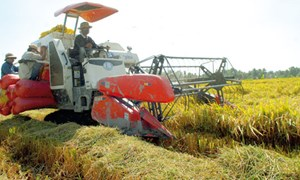 Đa dạng nguồn vốn đầu tư cho tam nông