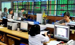 Các giải pháp phát triển và tái cấu trúc thị trường chứng khoán năm 2013