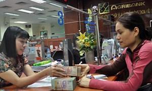 Năng lực tài chính của Agribank ngày càng vững chắc