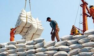 Hỗ trợ doanh nghiệp vượt khó, Bộ Tài chính đề xuất bổ sung đối tượng được vay vốn tín dụng xuất khẩu