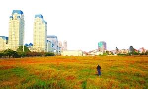 Định giá đất cần sát với giá thị trường