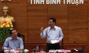 Trưởng Ban Kinh tế Trung ương Vương Đình Huệ làm việc tại tỉnh Bình Thuận