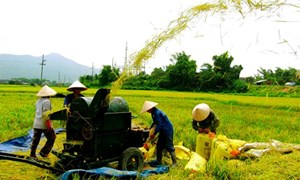 Phát huy hiệu quả các nguồn lực của doanh nghiệp trong xây dựng nông thôn mới
