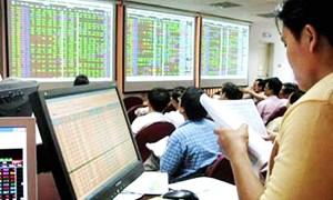 Một góc nhìn từ thị trường chứng khoán