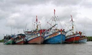 Phạt nặng nếu khai thác có tính hủy diệt tài nguyên, nguồn lợi biển