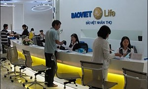 Năm 2014, Bảo Việt Nhân Thọ sẽ ra mắt 4 sản phẩm bảo hiểm