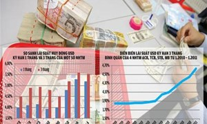 Thị trường tài chính Việt Nam năm 2014: Phát triển ổn định và bền vững