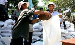 Bộ Tài chính xuất cấp hơn 4200 tấn gạo hỗ trợ nhân dân dịp Tết nguyên đán