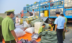 Triển khai hiệu quả công tác đấu tranh chống buôn lậu, gian lận thương mại và hàng giả trong dịp Tết Nguyên đán Ất Mùi 2015