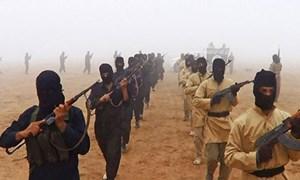 Boko Haram - IS Liên minh nguy hiểm