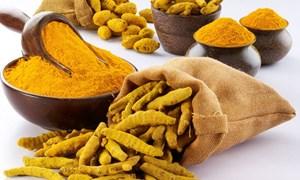 Nghệ vàng và tác dụng kinh ngạc trong phòng và chữa bệnh