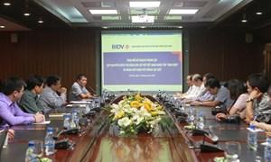 Sẽ thành lập Quỹ khuyến khích tài năng bơi lội trẻ Việt Nam Ánh Viên