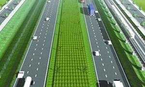 Dừng nghiên cứu đầu tư Dự án đường bộ cao tốc Biên Hòa - Vũng Tàu