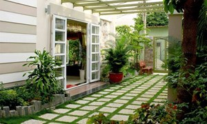 Những lưu ý khi tạo không gian xanh cho nhà phố