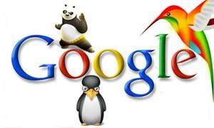 Bài học thương hiệu sau việc Google tái cấu trúc