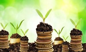 Nguyên lý đầu tư tài chính