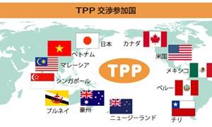 Thành viên TPP cam kết về thuế nhập khẩu dành cho Việt Nam ra sao?