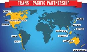 Cam kết TPP giúp thị trường dịch vụ tài chính ở Việt Nam phát triển